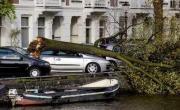 Verbond schat stormschade voorlopig op € 95 mln