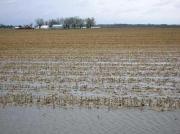 'Brede weersverzekering moet nationale regeling blijven'