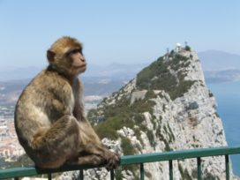 Gibraltar: voorbode van gevolgen Solvency II?