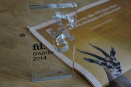 FD Gazelle voor snelgroeiend bedrijf financieel planners