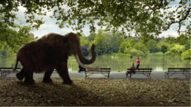Hoyhoy.nl roept in nieuwe reclame op tot verandering