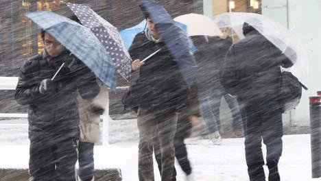 'Klimaatverandering zorgt voor meer risico's dan verzekeraars denken'