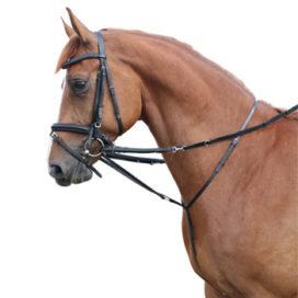 Paard Urona kan tussenpersoon drie ton kosten
