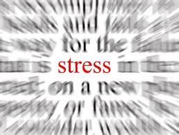 Nederlandse verzekeraars kwetsbaar voor stressscenario met langdurig lage rente