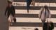 Schermafdruk 2017 07 15 15.17.17 80x43