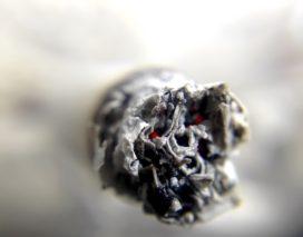 Verzekeraars maken zich grote zorgen over hoog aantal wietbranden