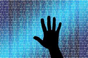 NN integreert advies en verzekering op cybergebied