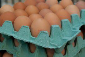 Achmea Rechtsbijstand onderzoekt aansprakelijkheid in eierschandaal