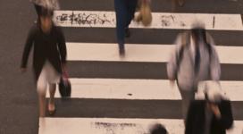 Bestuurdersaansprakelijkheid: onbezoldigd bestuurder kan persoonlijk aansprakelijk zijn. Wat te doen?