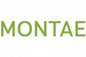 Montae en Floreijn fuseren tot Montae & Partners
