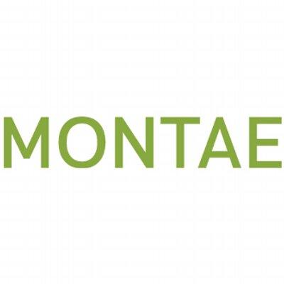 Montae fuseert met Zweedse pensioen-fintech