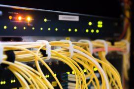 Vertrouwen van bedrijven in cyberpolis neemt toe