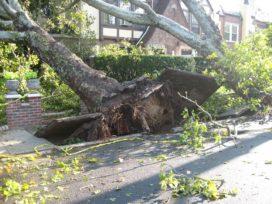 Opmerkelijk: al een jaar lang geen storm meer in Nederland