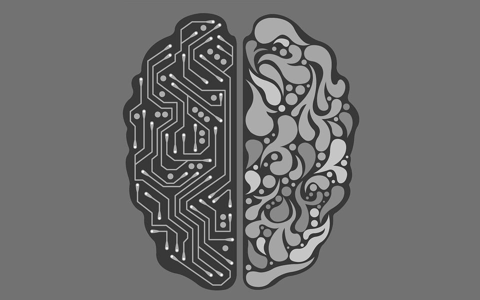 Nederlandse burger wantrouwt algoritmes