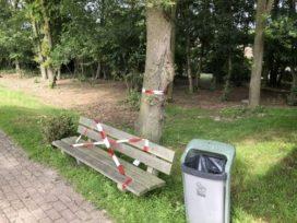 Nationale-Nederlanden erkent aansprakelijkheid in zaak processierups