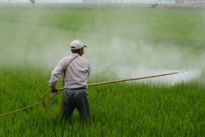 Monsanto moet doodzieke oud-tuinman $ 289 mln betalen voor gebruik Roundup