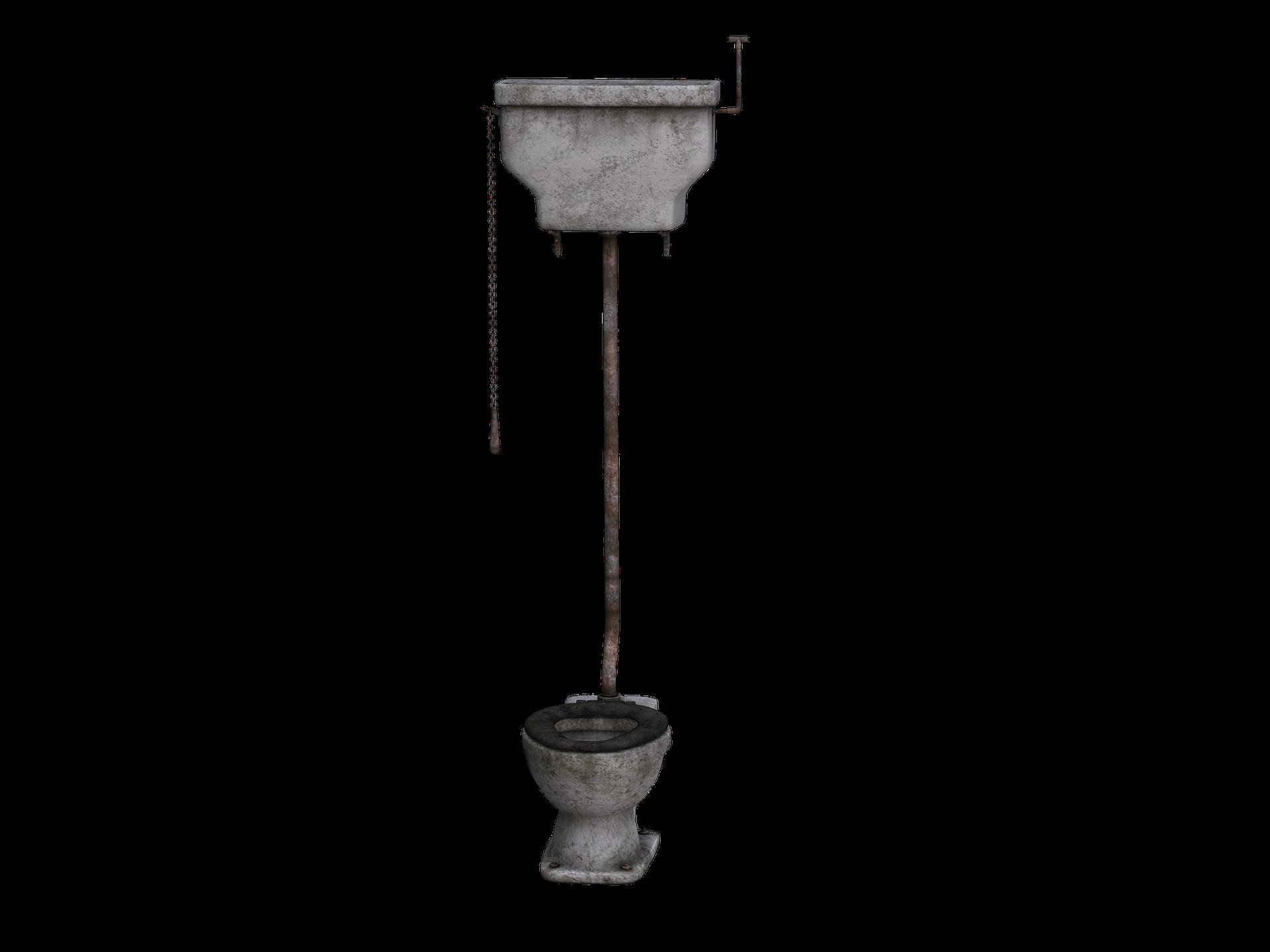 Water Trekt Weg Uit Wc.Nn Krijgt Terecht Argwaan Bij Tweede Pruik Die In Het Toilet