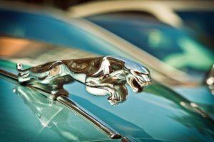 Joyridende zoon neemt pa's Jaguar mee: ASR mag schade op zoon verhalen