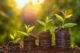 Geld groen milieu eco 80x53