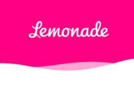 Van Ameyde wordt Europese claimspartner van Lemonade
