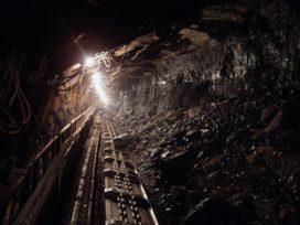 NN doet beleggingen in kolen in de ban