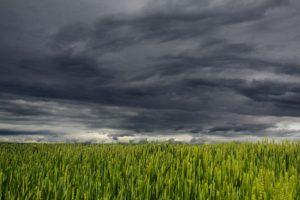 Trendrapport: Eén storm kan schaderesultaat maken of breken