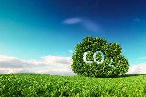 BeFrank komt met CO2-neutrale pensioenregeling