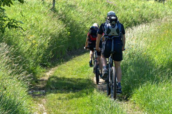 Losraken van mountainbike op een fietsendrager kwalificeert niet als ongeval
